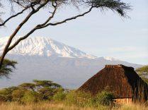 Snow-capped Kilimanjaro (photo by Teru)